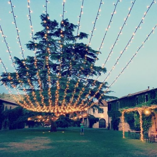 Stringa LED Fairy lights cieli luci scenografie matrimoni